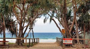 Dentist in Melbourne Partner Accommodation Mermaid Beach